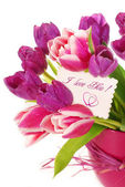 Bunch of tulips with greetings card — Stock Photo