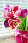 Bunch of tulips on the windowsill — Stock Photo