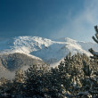 Mountain summit view through tree winter landscape snow seasonal - Stock Photo