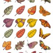 Collection of leaves and butterflies - Stock Vector