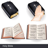 Holy bible — Stock Vector