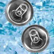 Aluminum Can - Stock Photo