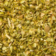 Closeup of oregano spice — Stock Photo