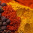 Closeup of spices composition, anise, cinnamon, paprica, curry, pepper — Stock Photo
