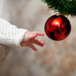 Christmas decorations — Stock Photo #8270739