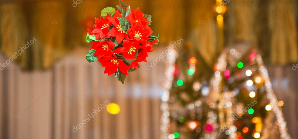 Christmas decorations  Stock Photo #8270718