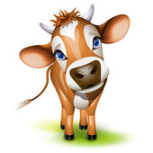 Little jersey cow — Vector de stock