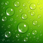 Waterdruppels op groen — Stockvector