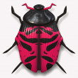Big pink ladybird beetle — Stock Photo