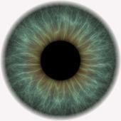 Gray blue eye ball — Stock Photo