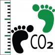 Stock Vector: Carbon footprint measure