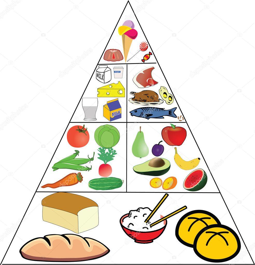 Food pyramid u2014 Stock Vector u00a9 nadil2 #10623746