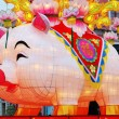 Year of Pig, Chinese Zodiac — Stock Photo #8428104
