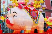 Year of Pig, the Chinese Zodiac — Stock Photo