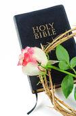 Sacra bibbia e la corona di spine con rosa isolato su sfondo bianco — Foto Stock