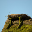 Stork Nest — Stock Photo #10343438
