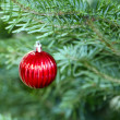 Bauble — Stock Photo #10369438