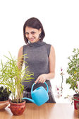 Woman irrigate plants — Stock Photo