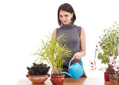 Woman watering a plant — Stock Photo