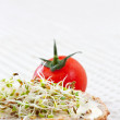 Sprout germ breakfast — Stock fotografie