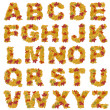 Stock Photo: Autumn leaves alphabet