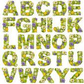 Grünes blatt mit blume schriftarten — Stockfoto