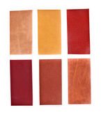 Collection of leatherette — Stock Photo
