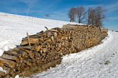 Stack of firewood in Winter — Stock Photo