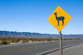 Lama Sign in the andes — Stockfoto