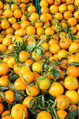 Fresh clementines with green leaves on a market — Stock Photo