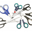 Set shears — Stock Photo