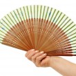 Fan in a woman hand — Stock Photo
