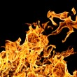 Fire on a black background — Stock Photo #9101037
