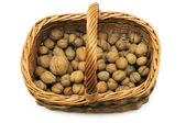 Wicker basket with nuts — Stock Photo
