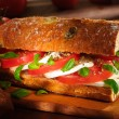 Tomato and mozzarella sandwich - Stock Photo