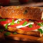 Tomato and mozzarella sandwich — Stock Photo #10081387