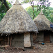 African huts, Ethiopia — Stock Photo #8024703