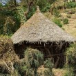 Stock Photo: Africhut, Ethiopia