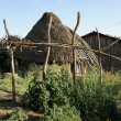 Stock Photo: Hut in Ethiopia