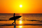 Sunrise Surfer — Stock Photo