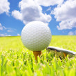 Golf Ball — Stock Photo #9118806
