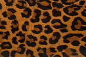 Leopard print pattern — Stock Photo