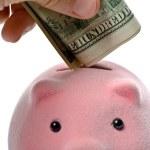 Piggy bank and dollars — Stock Photo