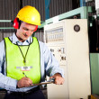 Foto Stock: Occupational health and safety officer