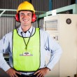 Stock Photo: Industrial health and safety officer