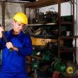 Blue collar worker — Stock Photo #10229925