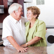 Happy senior couple — Stock Photo #10254094