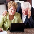 Unhappy senior couple worrying about expenses — Stock Photo #10254602
