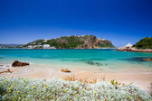 Beach of Featherbed nature reserve, Knysna, South Africa — Stock Photo