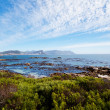 Boulders beach, Cape Town — Stock Photo
